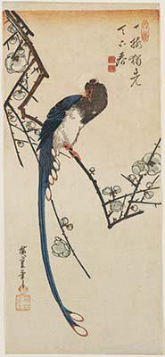 Utagawa Hiroshige   Pappagallo su un ramo di pino 1830-35 circa 383 x 171 mm silografia policroma Museum of Fine Arts, Boston  William Sturgis Bigelow Collection