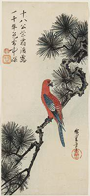 Utagawa Hiroshige   Uccello del paradiso e susino in fiore 1830-35 circa  383 x 172 mm silografia policroma Museum of Fine Arts, Boston - William Sturgis Bigelow Collection
