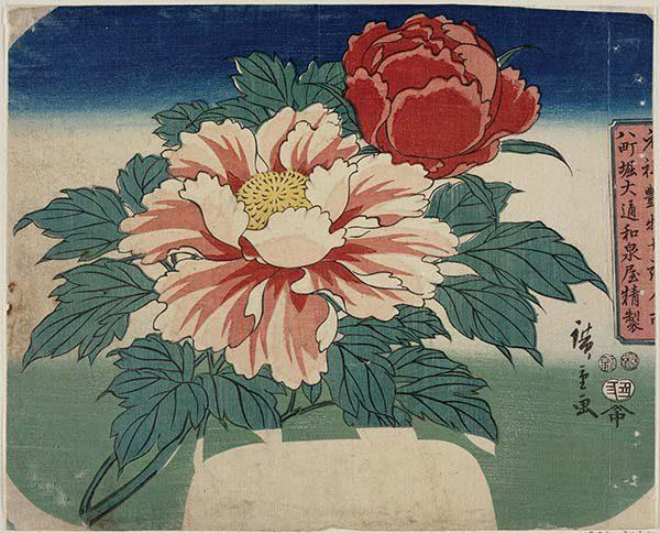 Utagawa Hiroshige -Peonie - 1853, secondo mese  219 x 270 mm - silografia policroma Museum of Fine Arts, Boston - Asiatic Curator's Fund